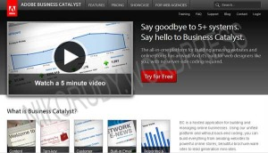 Businesscatalyst CMS