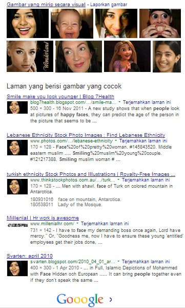 hasil-search-image