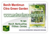 benih-mentimun-citra-garden-icon