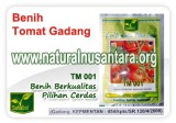 benih-tomat-gadang-icon