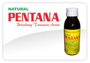 Pentana